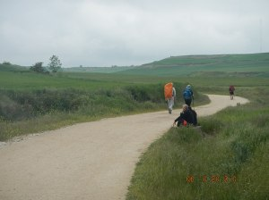 Peregrinos on the Meseta