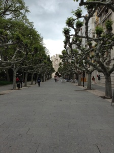 The Paseo Espolon with the Puerta Santa Maria  in the distance
