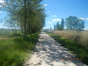 Canal de Castiila