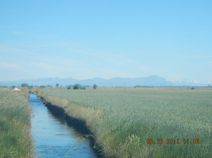 Irrigation canal with the mountains in the distance
