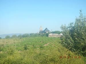 La Iglesia de San Esteban in the distance