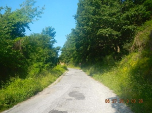 At first the road out of  was a paved one lane mountain road.