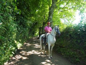 Lo and behold a horseman with his beautiful horse was on the trail with us!