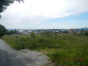 DSCN3448